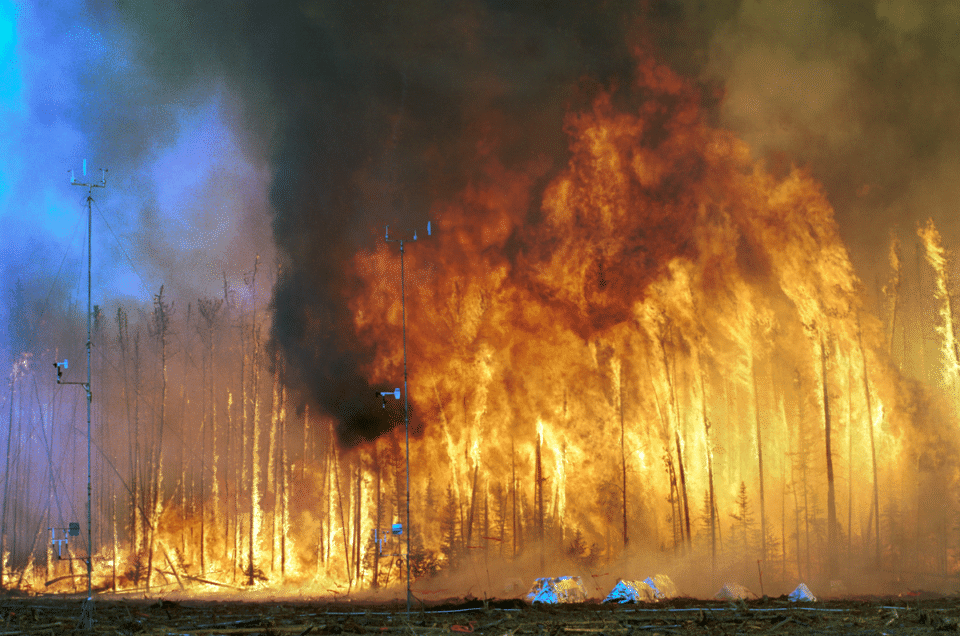 Chernobyl Forest Fires